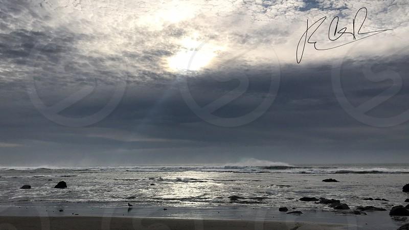Bodega Bay Beach California USA photo