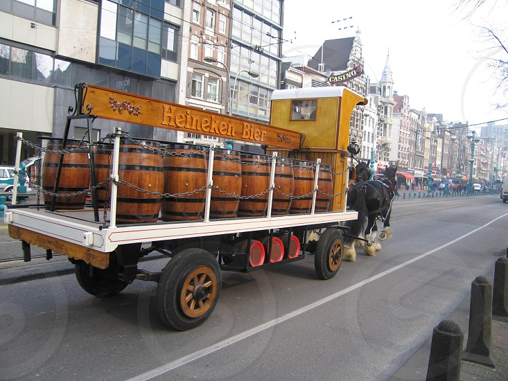Heineken deliver by horse photo