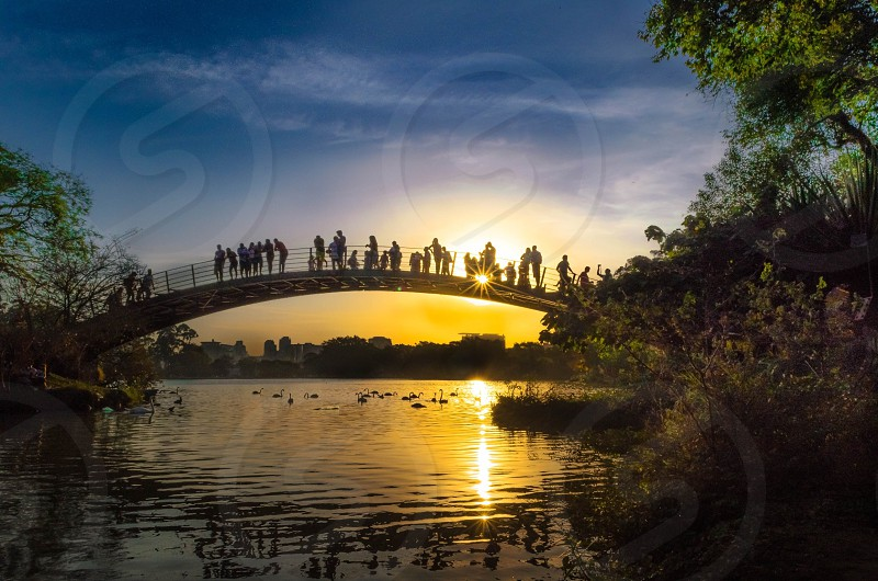 people standing on bridge over river with sunset view photo