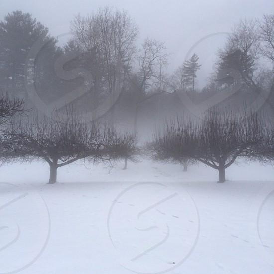 East Deerfield Massachusetts photo
