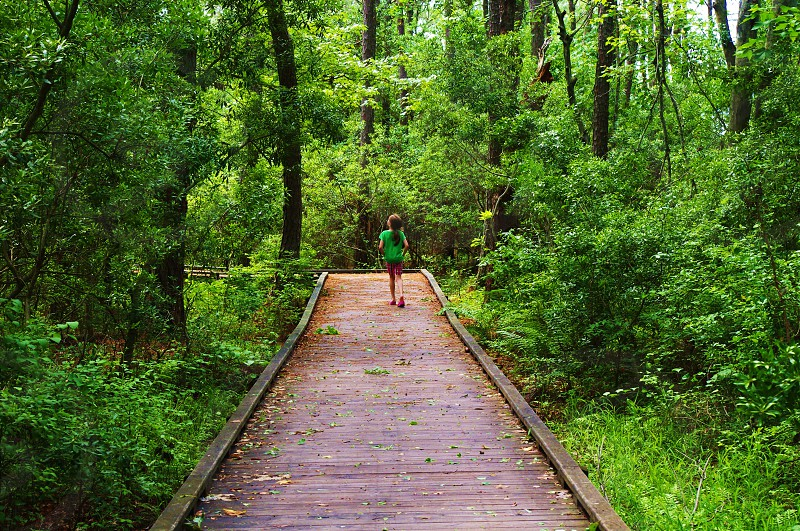 Little girl walking the boardwalk through the woods photo