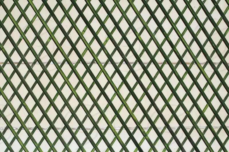 Green wooden lattice wall. photo
