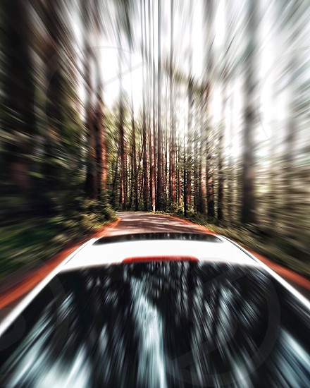 white sunroof suv driving through a winding forest road photo