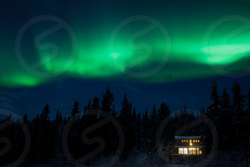Cozy taiga home warmly illuminated under starry night sky with dancing northern lights Aurora borealis in the boreal forest of Yukon Territory Canada photo
