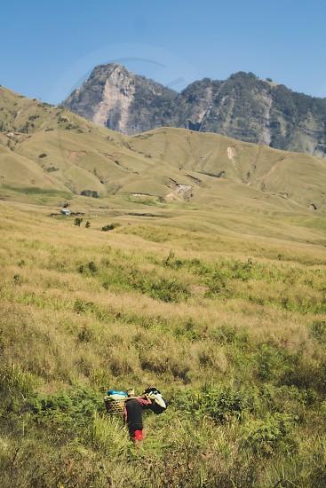 Depth; mountain; trek; hiking; walking; porter; hills; greenery; Indonesia; Lombok photo