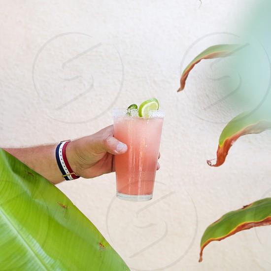 beverage pink drink plants watch cocktail hand holding wrist photo