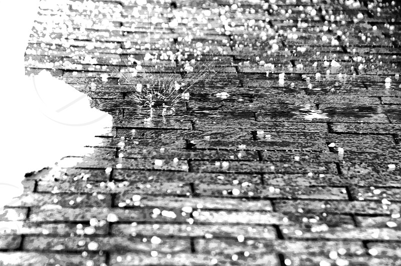 frozen ice ice cold texture winter sidewalk brick snow photo