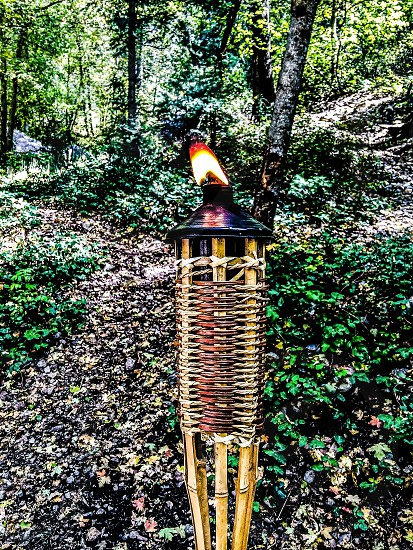 Tiki Torch photo