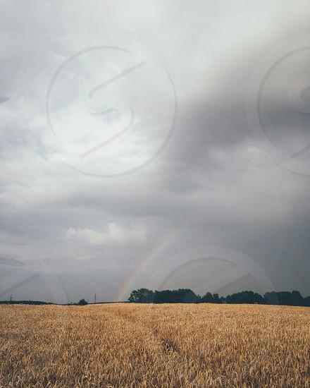 rainbow over farm field under grey cloudy sky photo