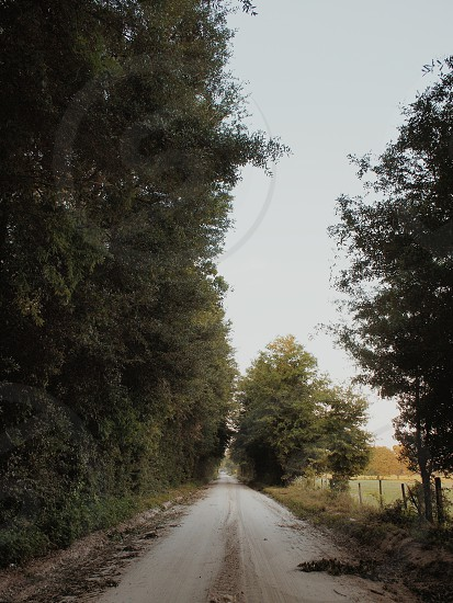 The road photo