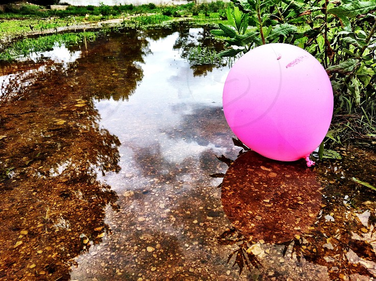 pink balloon on water photo