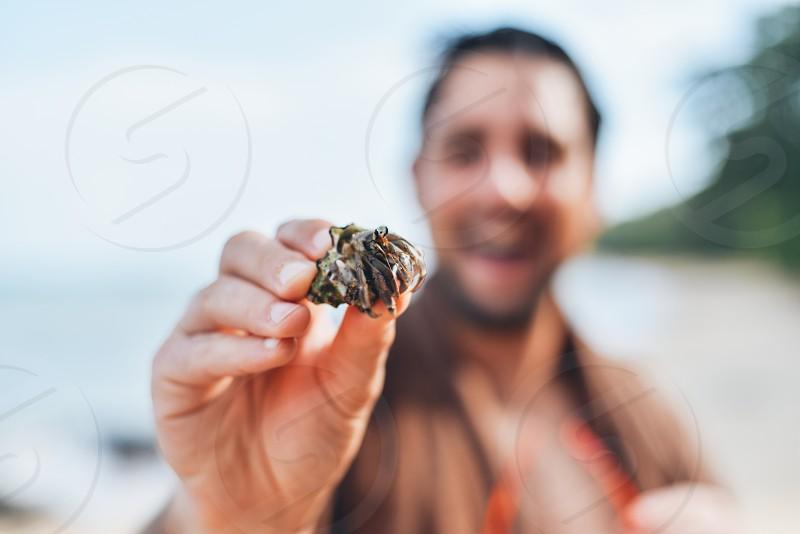 gray shell with sea creature animal photo
