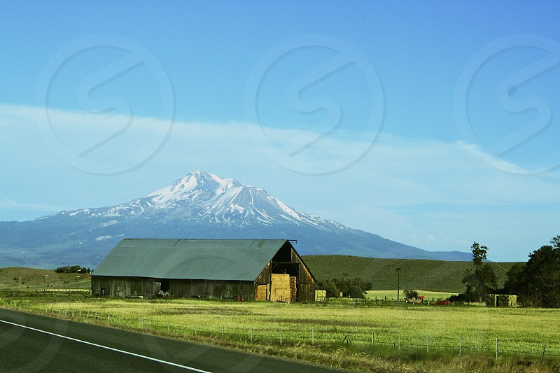 Mt. Shasta CA photo