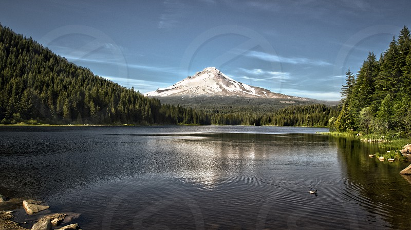 Mt Hood in Oregon. Viewed from the dam at Trillium Lake. photo