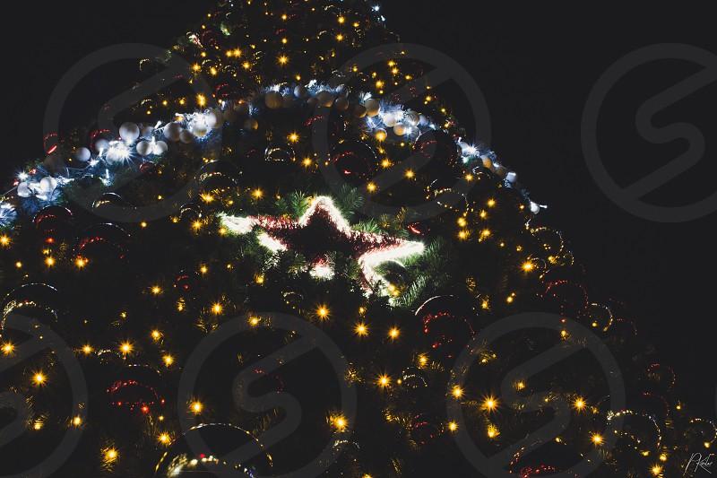 Christmas tree Christmas decoration  photo