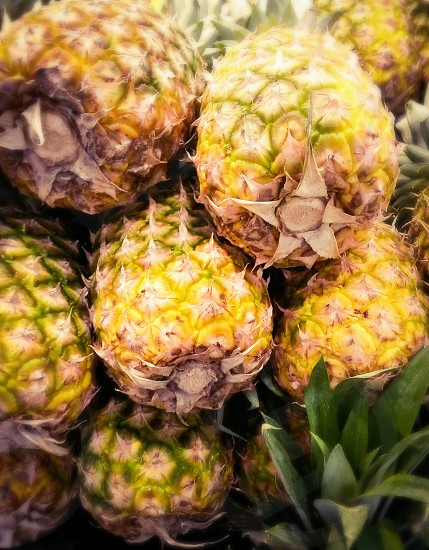 fresh pineapples photo