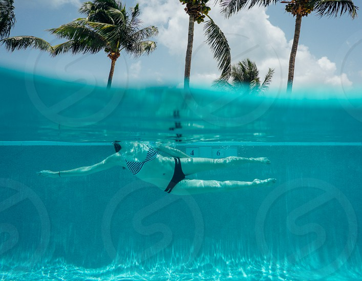 swim woman girl pool water tropical vacation palm trees swimming photo