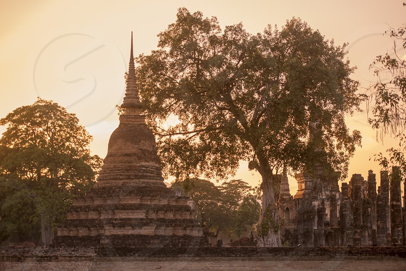 the Wat Mahathat Temple at the Historical Park in Sukhothai in the Provinz Sukhothai in Thailand.   Thailand Sukhothai November 2018 photo