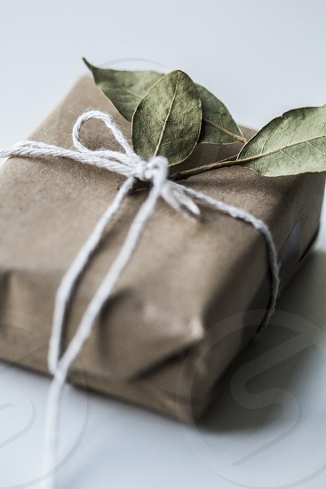 present;natural; gift; herbs; dry; kitchen; package; small; rope; ribbon;  photo