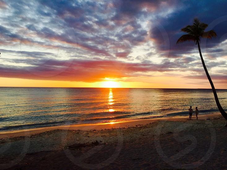 Caribbean sea sunset people silhouette Palm tree water sun summer relax travel destination romantic   photo