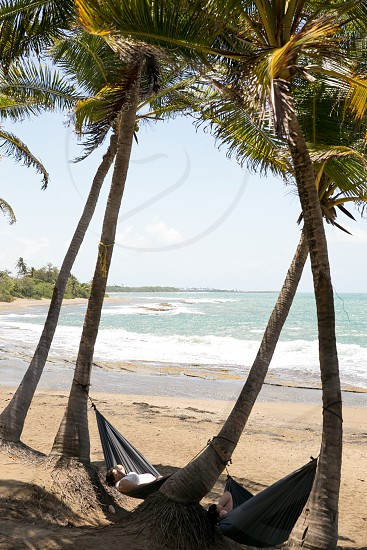 woman in gray hammock under green coconut palm tree photo