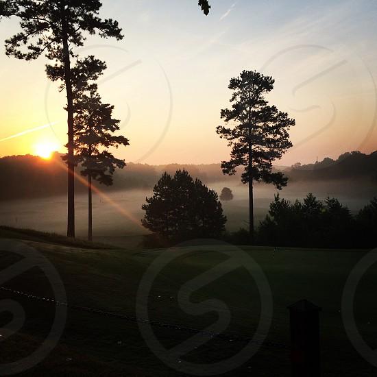 Sunrise foggy forest photo