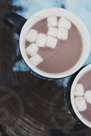 white marshmallows chocolate drink in blue and white ceramic coffee mug photo