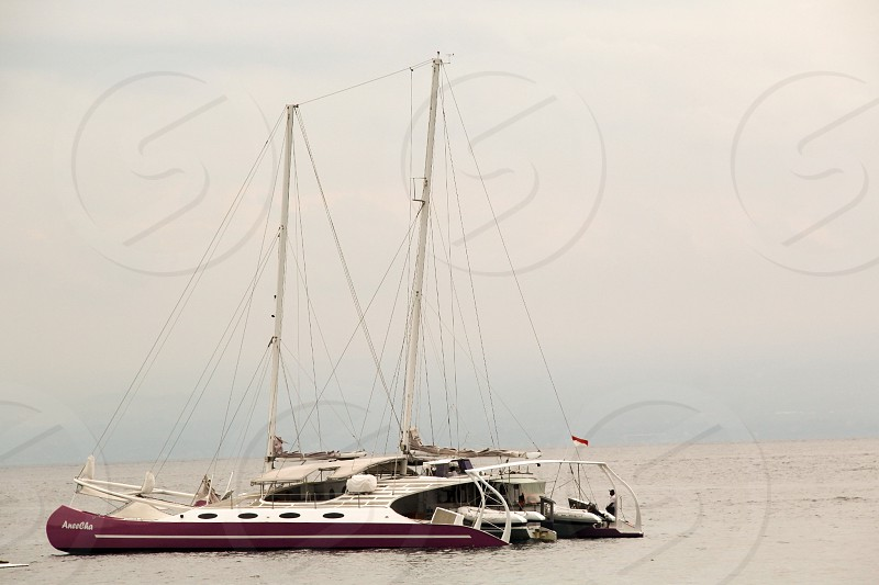 Up for sailing photo