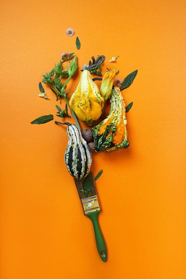 A creative autumn composition with a brush of green leaves with flowers and decorative pumpkins on an orange background photo