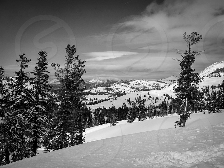 Tahoe  photo