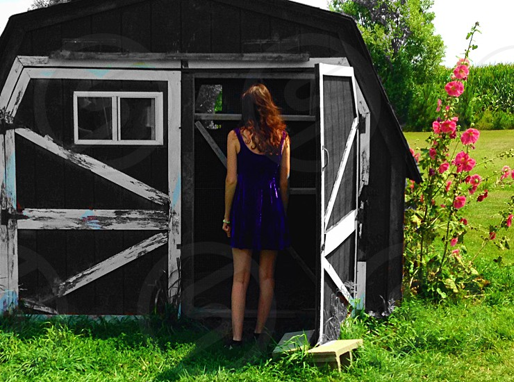 Young woman in blue dress looking inside a small barn on a summer day photo