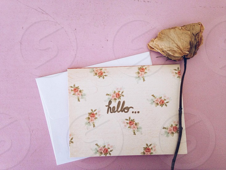Flower vintage snail mail mail letter stationary hello writing pink photo
