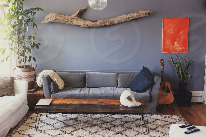 gray couch photo