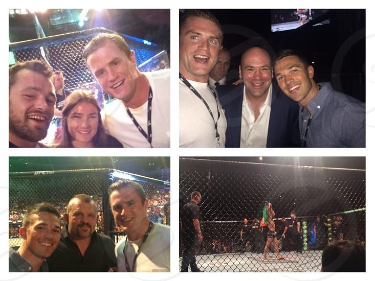 UFC night in Dublin photo