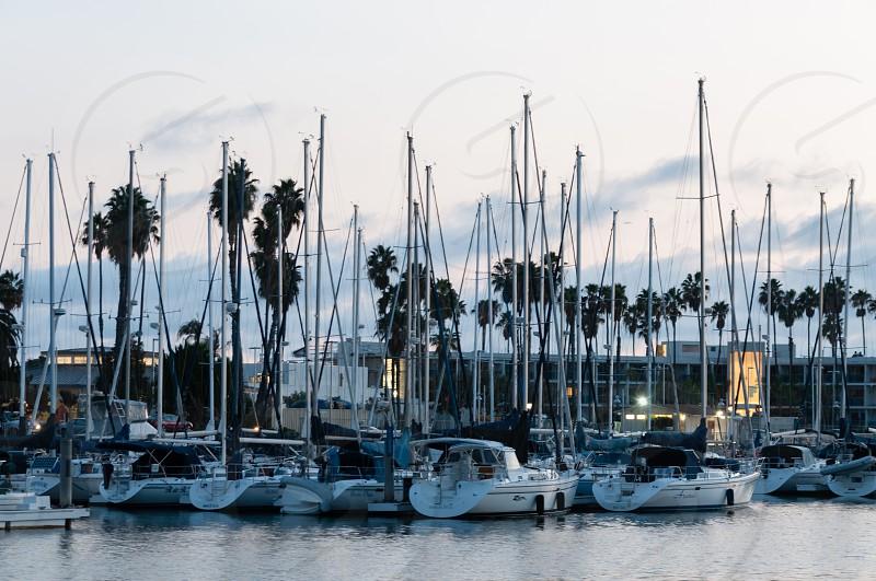 Masts in the marina at dusk photo
