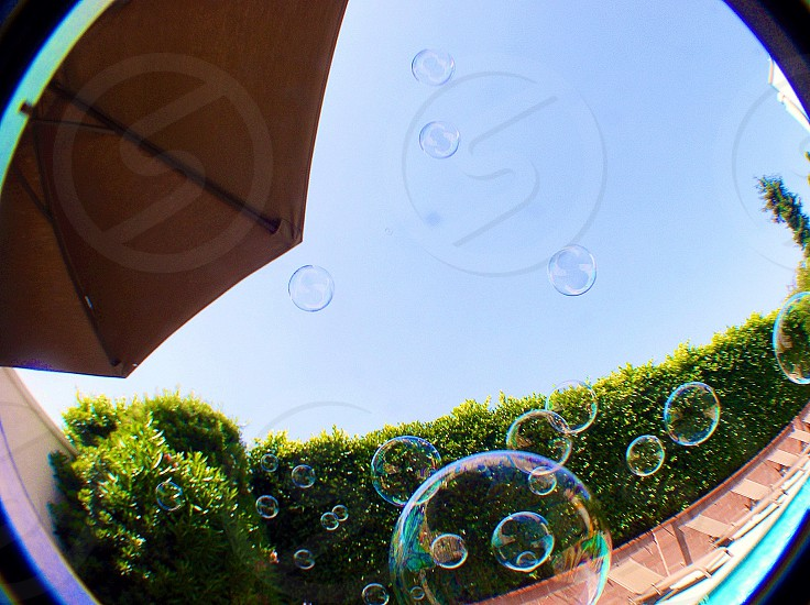 Bubbles by the pool.  photo