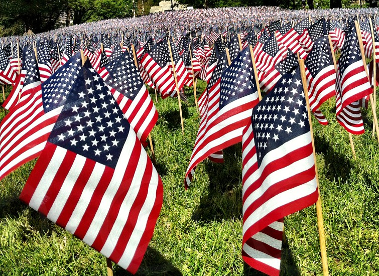 Memorial Day weekend Field of Flags. Boston MA. 2014. photo