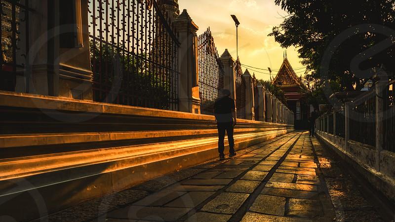 Natural light shadow sunset golden times photo