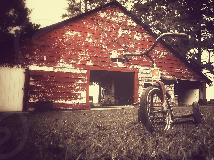 black tricycle on grass floor photo