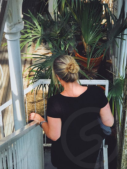 Plant parent plants Woman  palmtree trees palmtrees green steps  exotic tropical photo