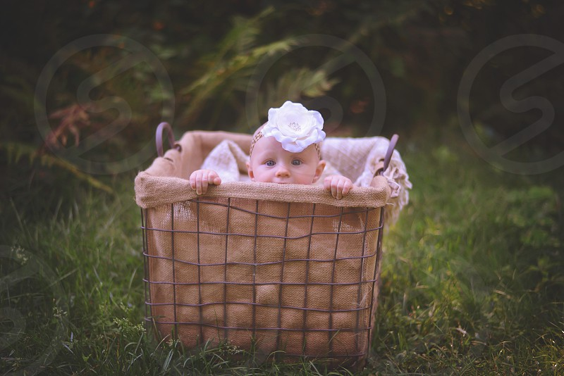 baby girl in a basket; peek a boo photo