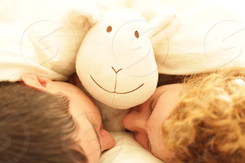 sleep sheep smiling toy sweet dreams photo