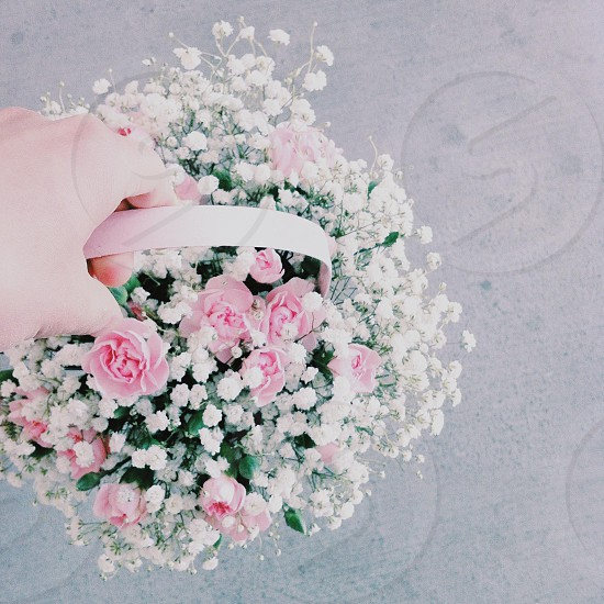 person holding a basket full of flowers photo