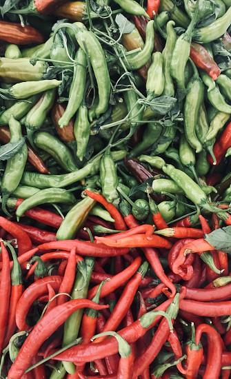 Kitchen colors cooking farmers market photo