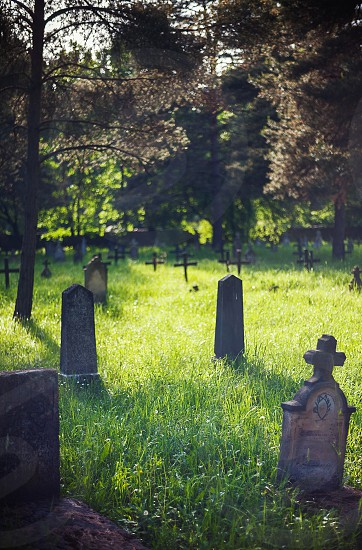 Details of an old Christian graveyard in park during spring. photo