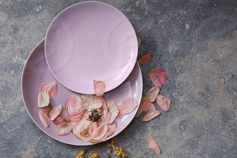 Pink plates with dried petals on stone background photo