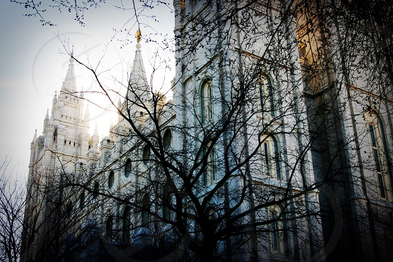 Salt Lake City Temple building spires photo
