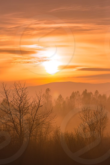 silhouette of trees and mountain at misty sunset photo