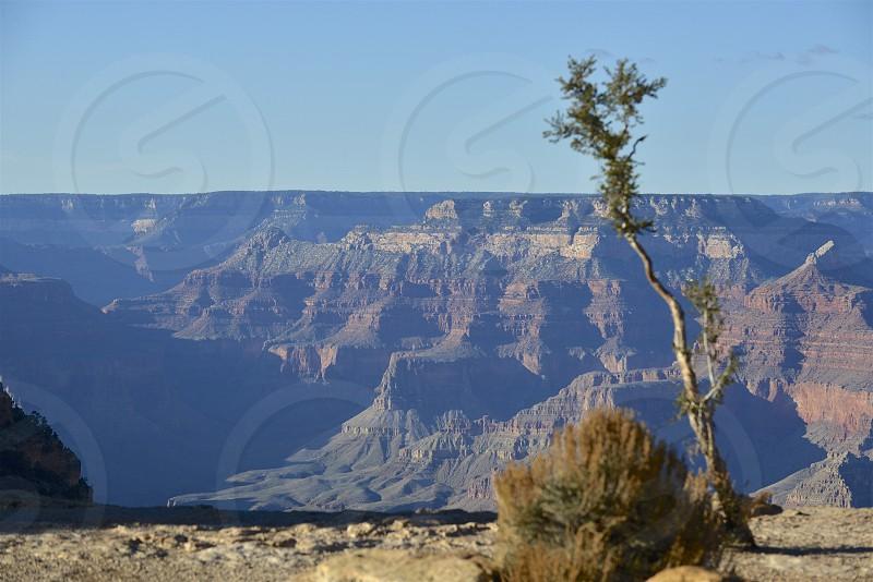 Grand Canyon National Park in Arizona. photo