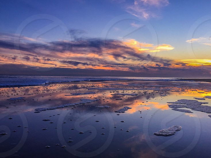 Reflections of beauty photo